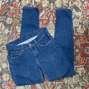 James Jeans 5-Pocket Twiggy Jeans